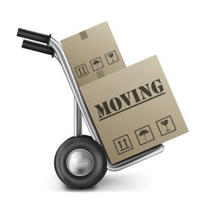 Moving Cardboard Box Hand Truck